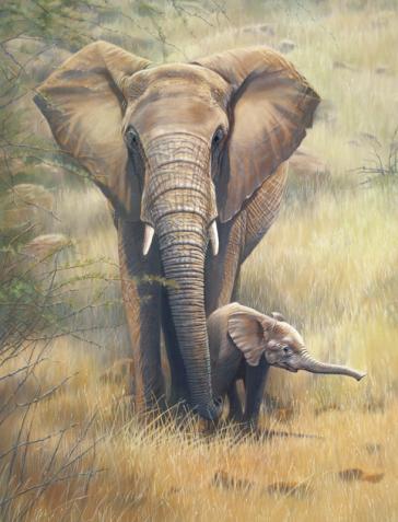 Brave Venturer by Lyn Ellison