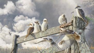 Field Day by Greg Postle