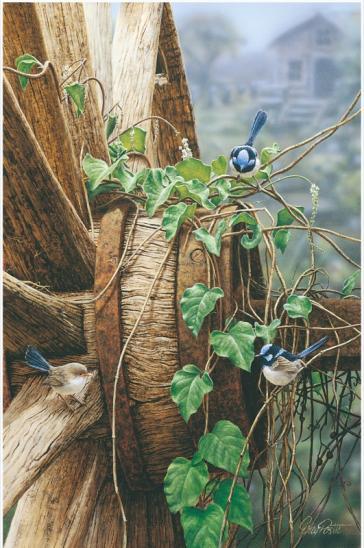 Fairy Wheel by Greg Postle