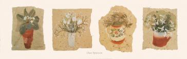 Flowers by Clare Sprawson