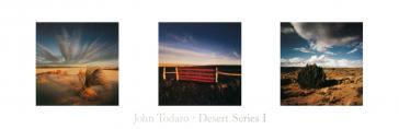 Desert Series 1 by John Todaro