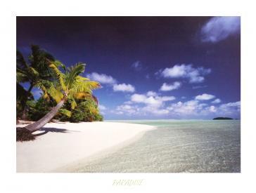 Paradise by Craig Tuttle