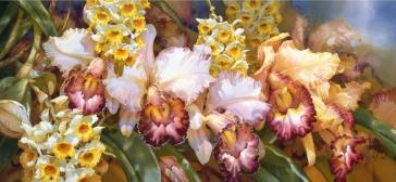 Orchid Valley by Darryl Trott