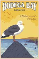 Vintage, Bodega Bay California, A Birdwatcher's Paradise