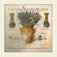 Lavandes De Bonnieux by Pascal Cessou