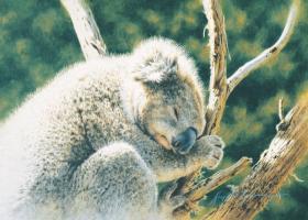 To Sleep Per Chance To Dream by Krystii Melaine
