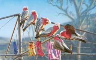 Hang Ten by Greg Postle