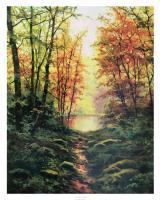 Autumn Walk by Salvador Caballero