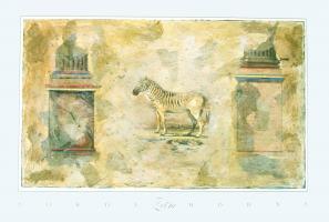 Zebra by Sokol - Hohne