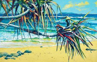 Beach Splendour by Susan Schmidt