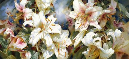 Floral Symphony by Darryl Trott