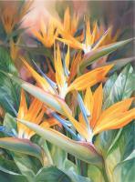 Paradise Aglow by Darryl Trott