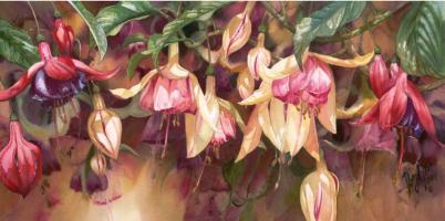 Radiant Fuchsias by Darryl Trott