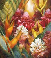 Tropics Alive by Darryl Trott